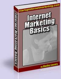Internet Marketing Basics by Shelley Lowery